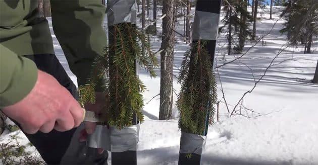 Alternativ til skifeller,Metoder mot bakglatte ski,Feste i motbakkene,Granbar mot bakglatte ski