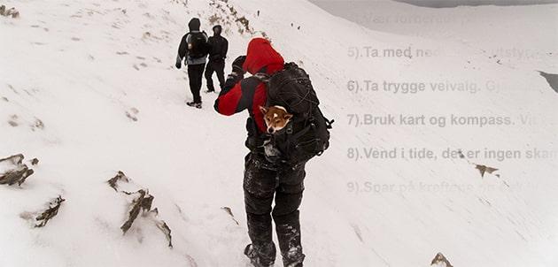 De nye fjellvettreglene, fjellvettreglene